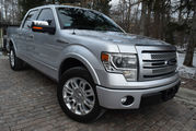 2013 Ford F-150 PLATINUM-EDITION